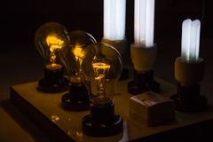Test lamp Boards with bulb,compact-fluorescent Stock Images