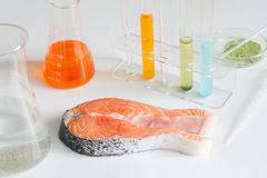 Test salmon fish in laboratory control of mercury and toxic dye. Closeup Royalty Free Stock Photo