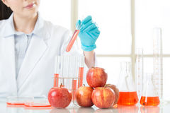 Test it and tell the answer of genetic modification fruit. Food for human health royalty free stock photo