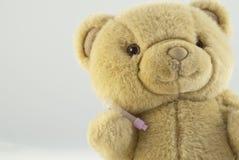 Test tube. A teddy bear holding a test tube for blood sample Royalty Free Stock Photos