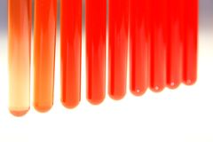 Test tube. With red sample in white background Royalty Free Stock Image