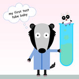 Test tube baby panda. A badger holding a test tube with a baby panda in it Stock Image