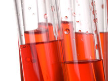 Test tube in lab. Test tubes in a laboratory for research of red liquid, blood Royalty Free Stock Image