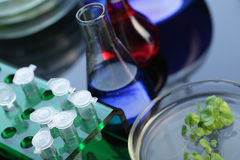 Test tube retotr Stock Image