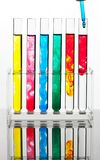 Test tube for testing in a chemical laboratory Stock Photos