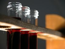 Test tubes. With red liquid Royalty Free Stock Images