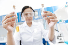 Test tubes being filled with chemical reagents. In the chemical lab. Selective focus of test tubes being filled with chemical reagents while being used for royalty free stock image