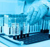 Test tubes with blood for analysis Royalty Free Stock Photo