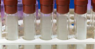 Test tubes for blood samples Royalty Free Stock Image