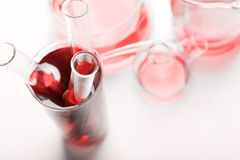 Test tubes with blood Stock Photography