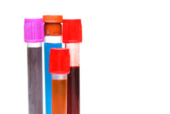 Test tubes with caps Stock Image