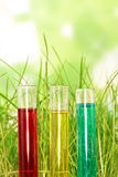 Test tubes with colored liquids in tgrass on abstract green. Three test tubes with colored liquids in the grass on abstract green background Royalty Free Stock Photos