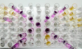 Test tubes with colorful liquid specimens Stock Photos