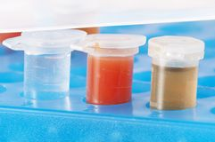 Test tubes with different colored chemicals Stock Images
