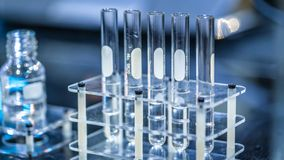 Test Tubes In Experiment Laboratory. Test Tube Set In Tubes Rack royalty free stock photo