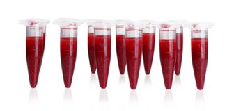 Test tubes filled with blood. On gray blurred background Royalty Free Stock Photography