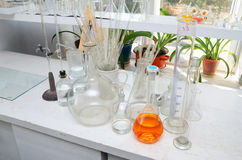 Test tubes and flasks in the chemical laboratory Stock Photo