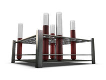 Test-tubes in holder with blood Royalty Free Stock Photography