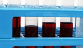Test tubes. Isolated on white background Royalty Free Stock Images