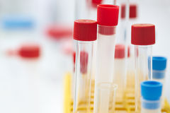Test tubes. In the laboratory Stock Photography
