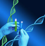 Test tubes laboratory DNA helix model Stock Photography