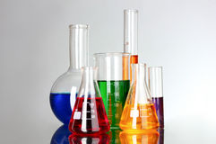 Test tubes in the laboratory on a gray Stock Images