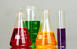 Test tubes in the laboratory on gray Stock Image