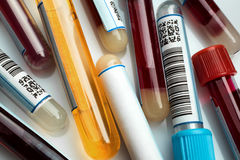 Test tubes in laboratory stock photos