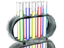 Test tubes in rack Royalty Free Stock Photo