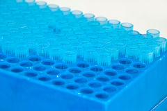 Test tubes on rack Stock Photography