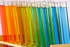 Test tubes in rack Stock Images