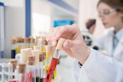 Test tubes with reagents Stock Image
