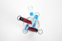 Test tubes with red and blue chemical solutions Stock Photos