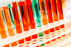 Test tubes. With red and green chemicals Royalty Free Stock Photography