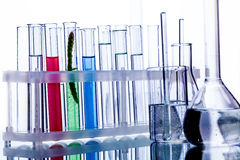 Test tubes with reflection Royalty Free Stock Photo