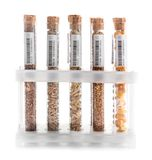 Test tubes with seeds of agricultural plants. On white background royalty free stock image