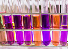 Test tubes sit in rack Stock Photography