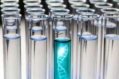 Free Test Tubes With A Dna Sample Royalty Free Stock Photos - 105113358