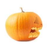 testa arancio della zucca delle Jack-o'-lanterne isolata Immagine Stock Libera da Diritti