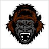 Testa arrabbiata della gorilla Immagine Stock Libera da Diritti