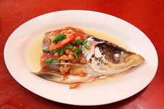 Testa cinese dei pesci del flusso Fotografia Stock Libera da Diritti