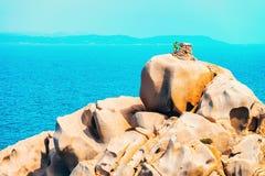 Testa d'homme et de capo en Santa Teresa Gallura sur la Sardaigne photographie stock libre de droits