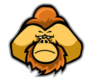 Testa degli orangutan illustrazione di stock