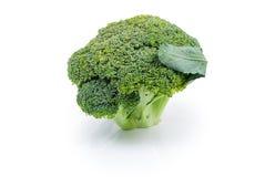 Testa dei broccoli su un fondo bianco fotografie stock libere da diritti