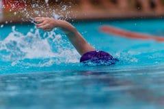 Testa del braccio del colpo del nuotatore Fotografie Stock