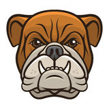 Testa del bulldog royalty illustrazione gratis