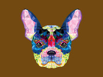 Testa del bulldog francese nel modello geometrico Fotografia Stock Libera da Diritti