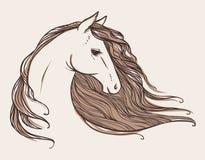 Testa del cavallo Schizzo del tatuaggio Illustrazione disegnata a mano di vettore Fotografia Stock Libera da Diritti