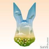 Testa del coniglio con i prati e le siluette verdi dei cigni che volano nel cielo blu con le nuvole Immagini Stock