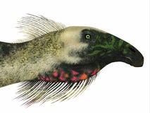 Testa del dinosauro del Beipiaosaurus Illustrazione di Stock